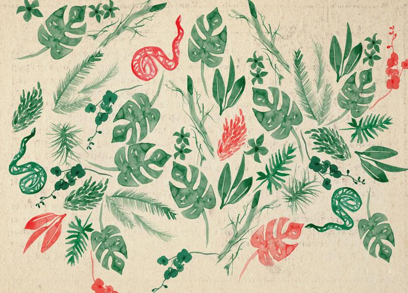 fiore-rosso1233-088-12