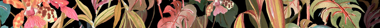 fonod-tropical